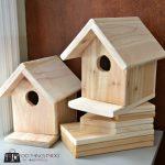 Birdhouse-8