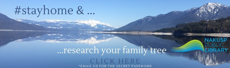 stayhome ancestry password